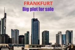 Plot in  FRANKFURT